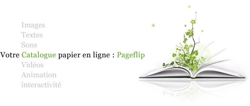 imagePageflip